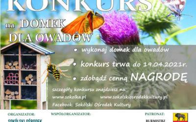 Konkurs na domek dla owadów